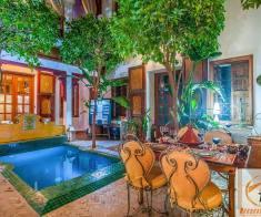 Riad maison d'hôtes de 6 chambres en activité